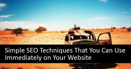 Simple SEO Techniques That You Can Use Immediately on Your Website